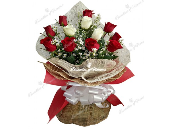 Flower delivery philippines flower shop philippines 9 pcs red 1 dozen elegant red and white mightylinksfo Choice Image