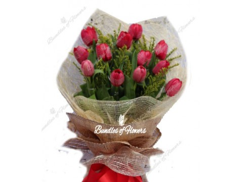 12 Red Tulips