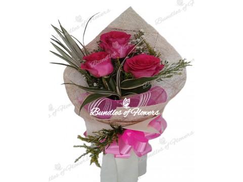3 Ecuadorian Pink