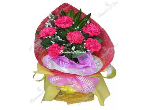 6 Fuchsia Pink Carnations