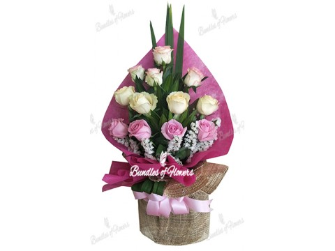 12 Elegant Mixed Roses