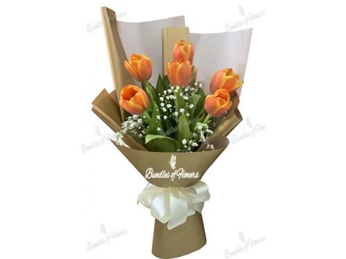 6 Orange Tulips
