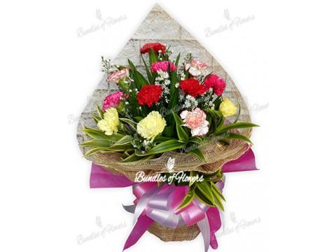 1 Doz Mixed Carnations