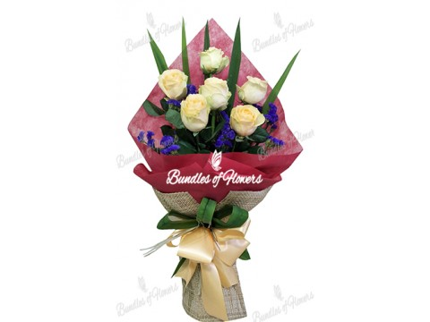 6 Imported Peach Roses