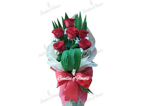 6 Imported Red Roses