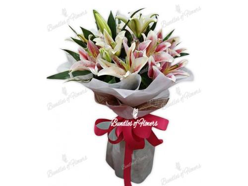 6 Stargazers Bouquet