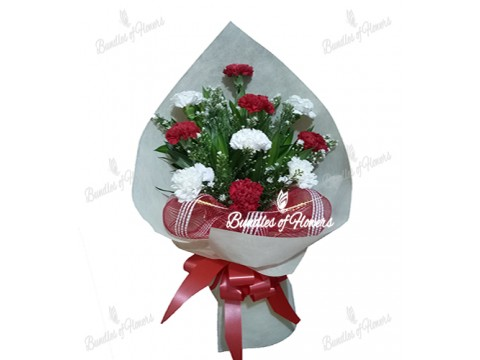Carnations Bouquet 01