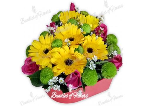 Flower Box 10