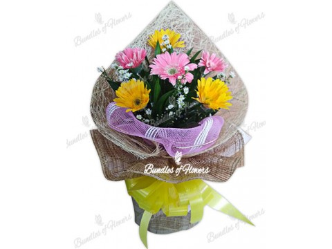 Pink and Yellow Gerberas