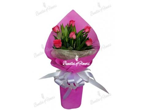 Roses Bouquet 08
