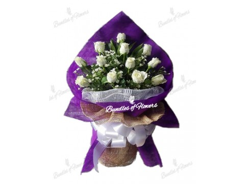 12 White Roses in Purple