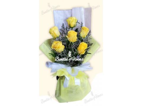 6 Ecuadorian Yellow