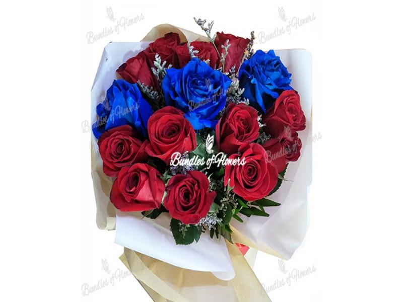 Blue and Red  Ecuadorian