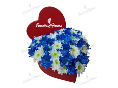Flower Box 15