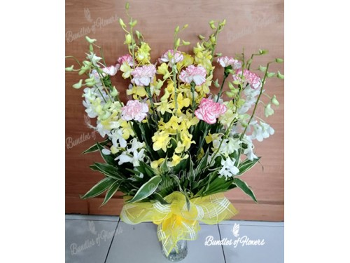 Orchids and Carnations in Vase