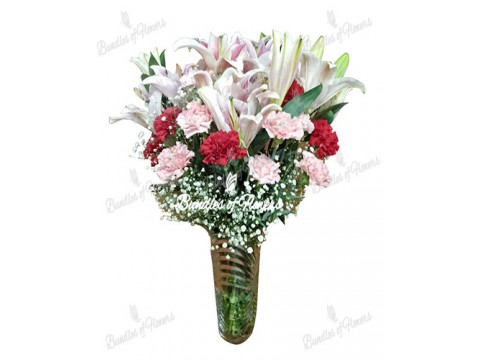 Stargazers and Mixed Carnations