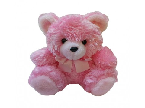 Bear Pink 10in