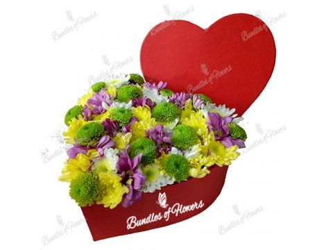 Flower Box 9