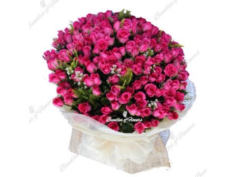 Pink Abundant
