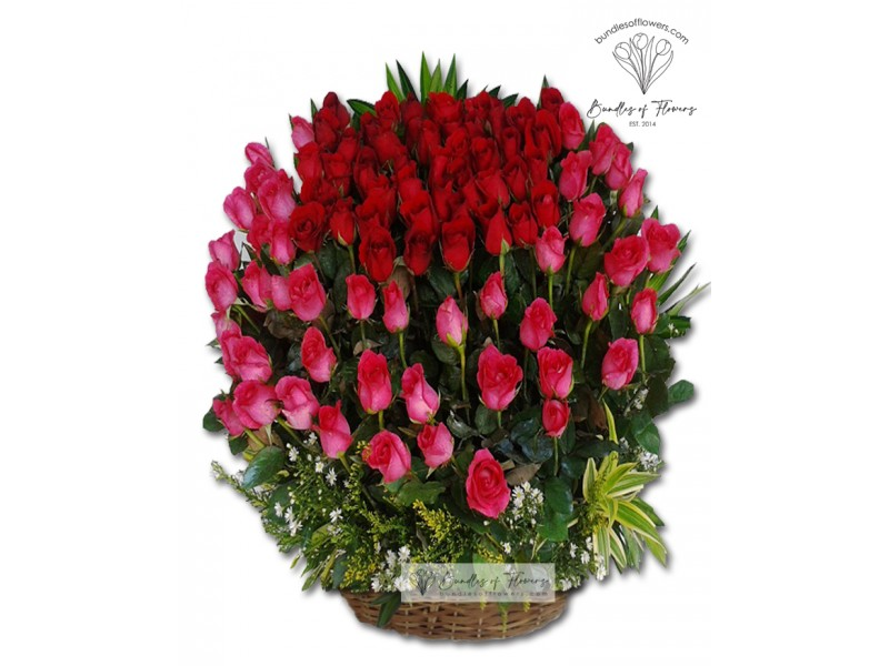 8 doz Roses in a Basket