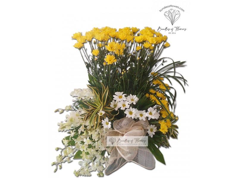 Flower Basket 06