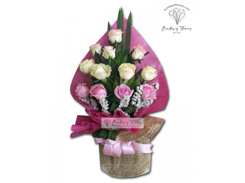 12 Mixed Imported Roses