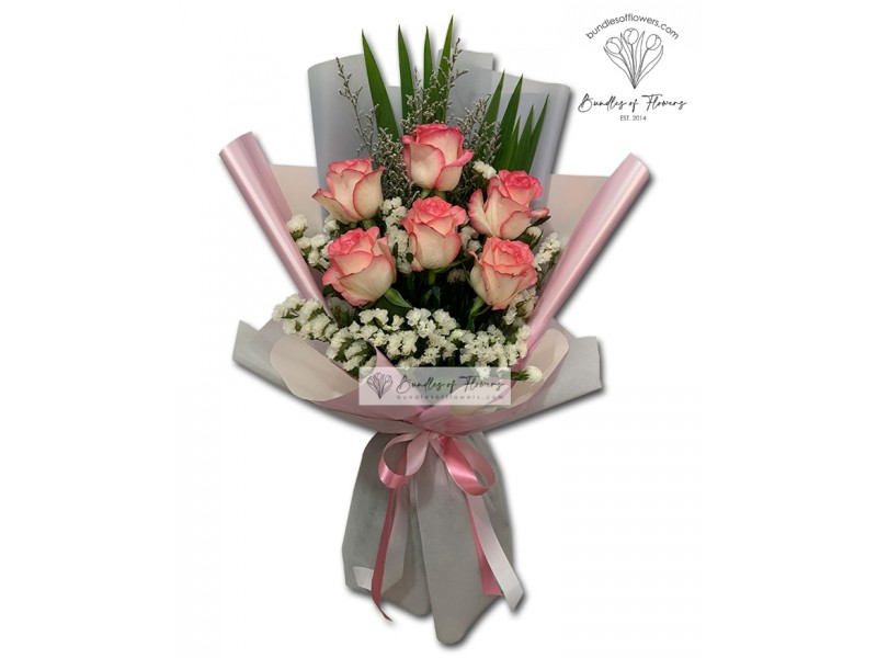 6 Two Tone Pink Roses