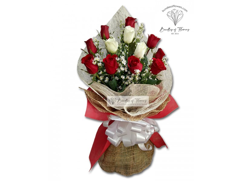 1 Dozen Elegant Red And white