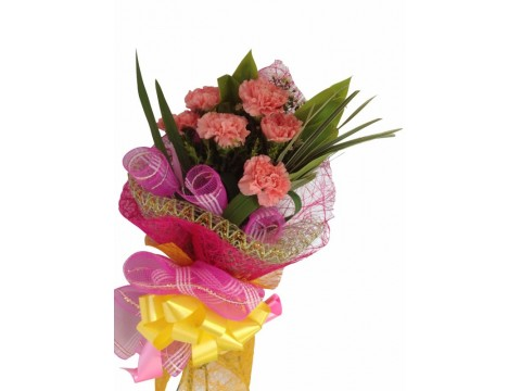 6 Pink Carnations