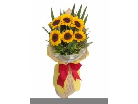 6 Sunflower