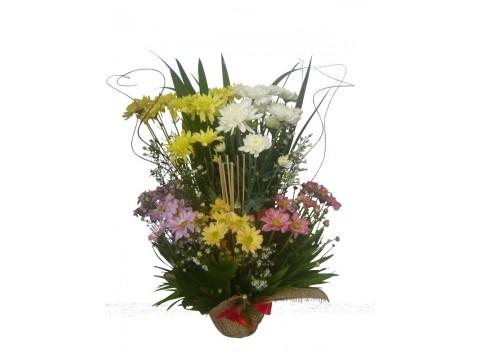 Mums Vase 01