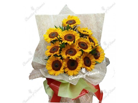 1 Dozen Sunflowers