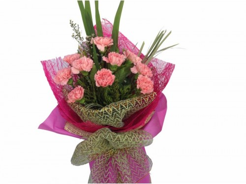 10 Pink Carnations