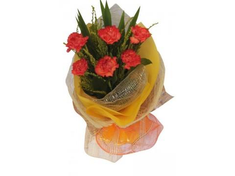 6 Orange Carnations