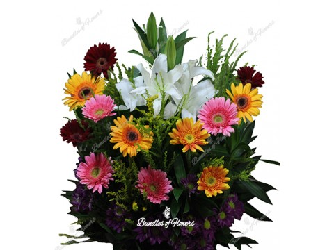 gerberas basket with casablaca