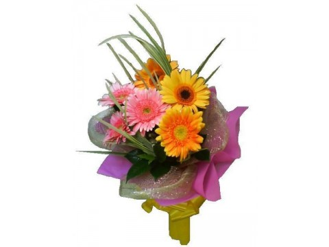 Gerberas Bouquet 05