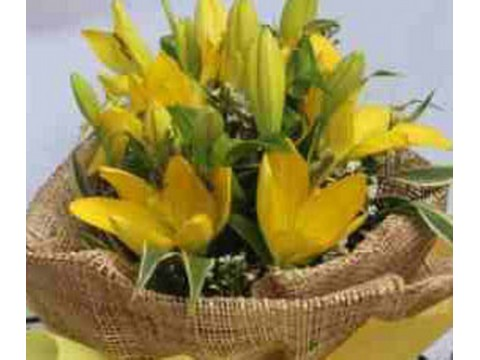 Asiatic Yellow Bouquet