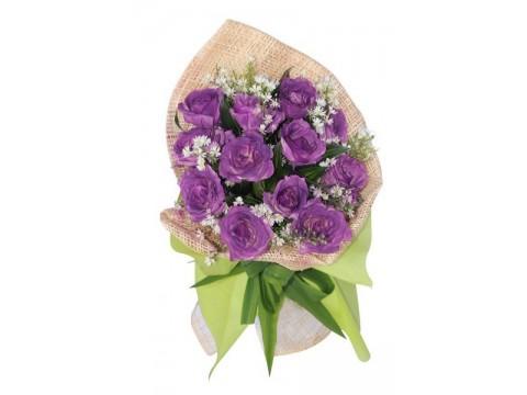 12 Purple Roses