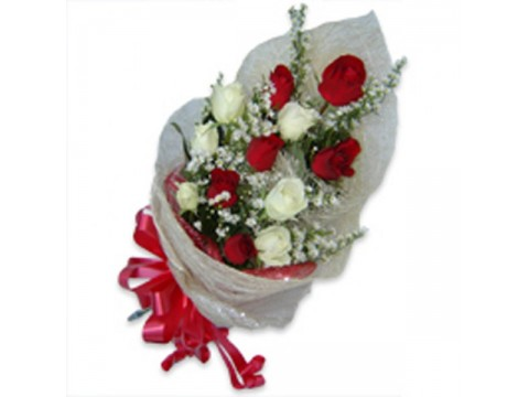 Mixed Red And White Roses