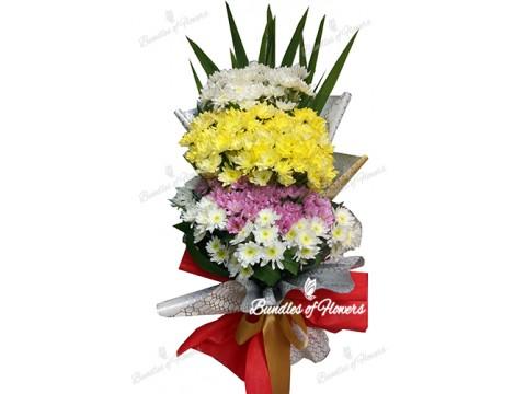 Mixed Mums Bouquet