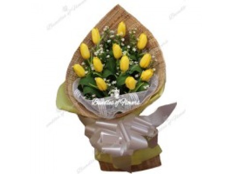 Lovely Yellow Tulips